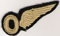 Once qualified Jack was awarded his wing
